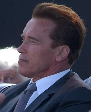 "Arnold Schwarzenegger's divorce drama to be storyline of a ""Law & Order: SVU"" episode"