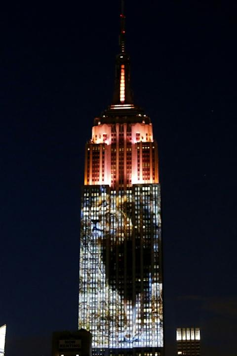 An image of Cecil the lion, whose killing has sparked international outrage, was prime among animals whose pictures covered 33 floors of the southern face of one of the world's most famous landmar