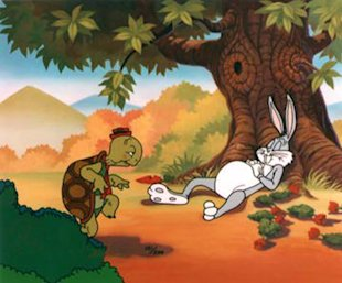 Have A Lot Of Sales Leads? Do Not Be Like Aesop's Hare! image tortoise and hare