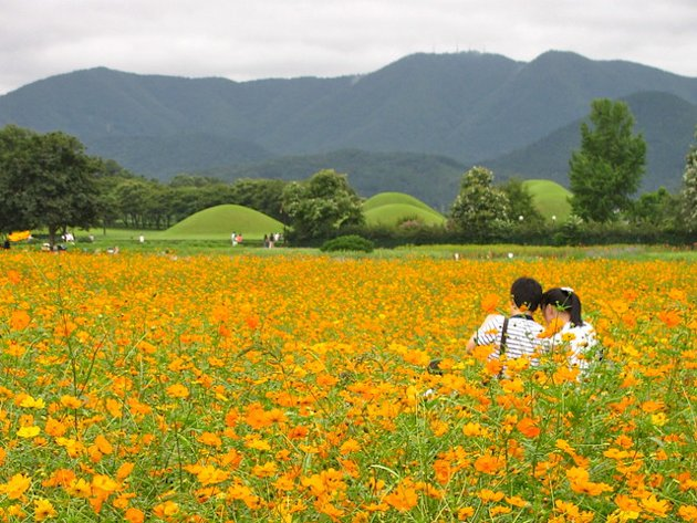 Love in Gyeongju