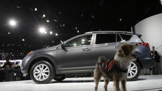 A service dog named Cookie walks around the Toyota RAV4 during it's world debut at the LA Auto Show in Los Angeles, Wednesday, Nov. 28, 2012. The annual Los Angeles Auto Show opened to the media Wednesday at the Los Angeles Convention Center. The show opens to the public on Friday, November 30. (AP Photo/Chris Carlson)