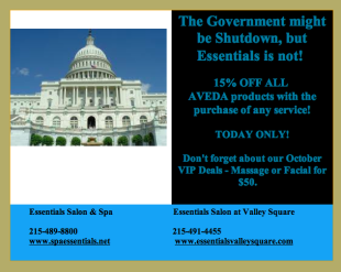 Email Strategy: When The Government Shuts Down image Screen Shot 2013 10 02 at 3.52.22 PM