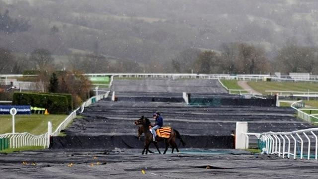 Horse Racing - Cheltenham Festival beats big freeze