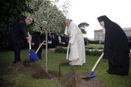 Pope Francis plants an olive tree with Israel's President Shimon Peres, left, Palestinian President Mahmoud Abbas, second from left, and Ecumenical Patriarch Bartholomew I, right, in a sign of peace during an evening of peace prayers in the Vatican gardens, Sunday, June 8, 2014. Pope Francis waded head-first into Mideast peace-making Sunday, welcoming the Israeli and Palestinian presidents to the Vatican for an evening of peace prayers just weeks after the last round of U.S.-sponsored negotiations collapsed. (AP Photo/Max Rossi, Pool)