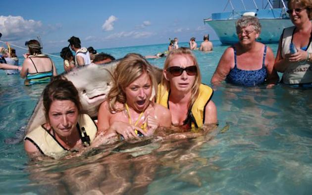 It's behind you: The now infamous stingray photobomb