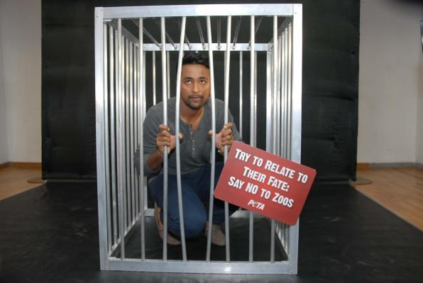 Cricketer Pragyan Ojha locks himself in a cage during an animal rights campaign organised by PETA in Hyderabad on Feb.25, 2014. (Photo: IANS)