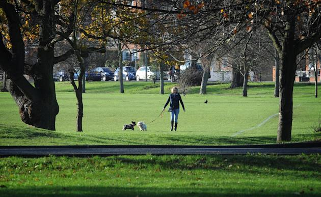Tooting Common in south west London. Image: Stefan Rousseau/PA Wire