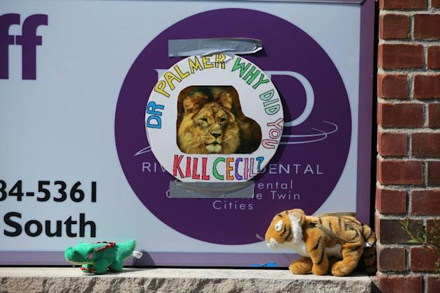 Protesters placed stuffed animals outside Walter Palmer's River Bluff Dental Clinic in Minnesota, after it was revealed the US dentist had paid $55,000 to kill a lion on a hunting trip to Zimbabwe