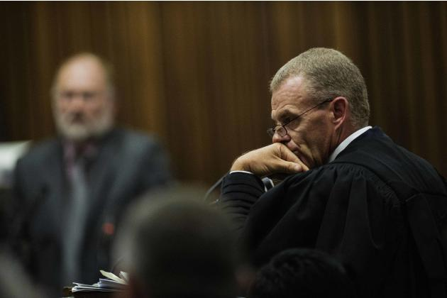 State Prosecutor Nel cross examines forensic expert Dixon during the trial of South African Olympic and Paralympic athlete Pistorius in Pretoria
