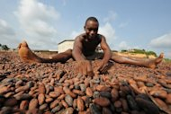 A worker at a cocoa cooperative for wholesale export sorts cocoa beans in Moussadougou, a village on the southern coast of Ivory Coast in 2008. Ivory Coast on Tuesday hosts world players in the cocoa business for a conference on how to face up to the challenges posed by soaring demand.