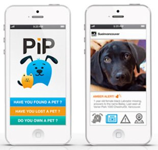 A new app can help you find lost pets