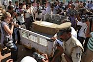Media gather around the coffin carrying the body of Jacintha Saldanha at an airport in Mangalore on December 16, 2012. Saldanha's body was flown back from Britain on Sunday and was due be buried at a cemetery in Shirva, near Mangalore, after a funeral in the Catholic parish church.