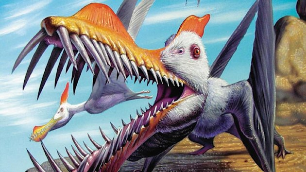 Asteroid may not have wiped out dinosaurs: New evidence is ...