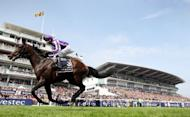 Camelot, ridden by jockey Joseph O'Brien, is pictured in action on June 2. Odds-on favourite Camelot won the Irish Derby on Saturday to hand trainer Aidan O'Brien his seventh successive victory, and 10th overall, in the Classic