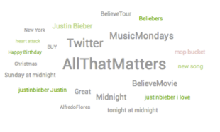 Who Are Beliebers, What Do They Have to Say & Why Do We Care? image bieber3b