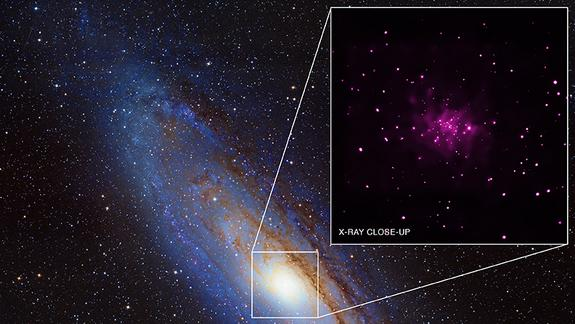 Trove of Black Holes Discovered in Andromeda Galaxy