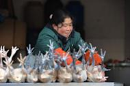 A market holder sells chickens in Hefei, central China, on January 11, 2013. Chinese inflation rose more than expected to hit a 10-month high in February, official data showed, as holiday season spending and rapid credit growth accelerated price rises
