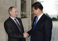Russia's President Vladimir Putin (L) welcomes his Chinese couterpart Xi Jinping (R) during their meeting in the Russian Black Sea resort of Sochi, on February 6, 2014