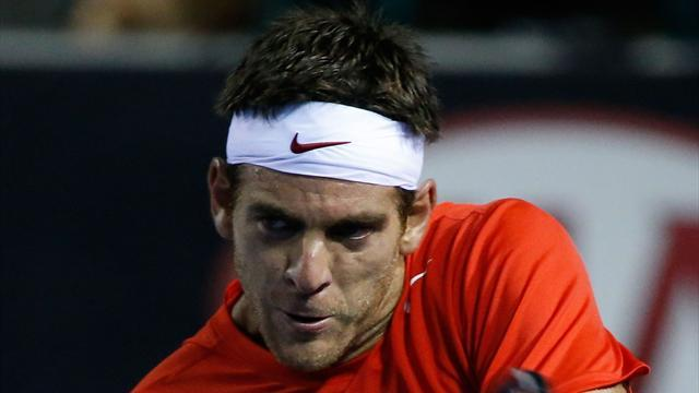 Tennis - Del Potro confirms surgery on injured wrist