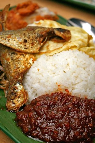 Nasi Lemak: A nutty love story