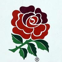 The RFU have appointed Barrister Gerard McEvilly as new head of discipline