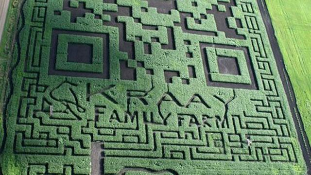 Corn Maze Becomes World's Largest QR Code