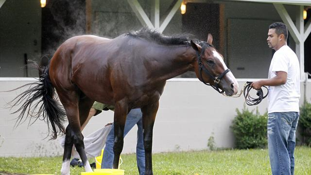 Union Rags' special story