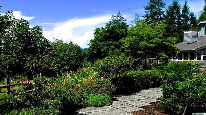 In this June 25, 2013 photo, the front entry of this home has more eye appeal after the lawn was reclaimed using shrubs, trees, flowering perennials and a walkway rather than turf grass, in Langley, Wash. A heavy mulch cover helps minimize weeds. (AP Photo/Dean Fosdick)