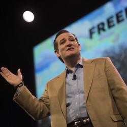 Ted Cruz To Potential 2016 Candidates: 'Don't Talk, Show Me'