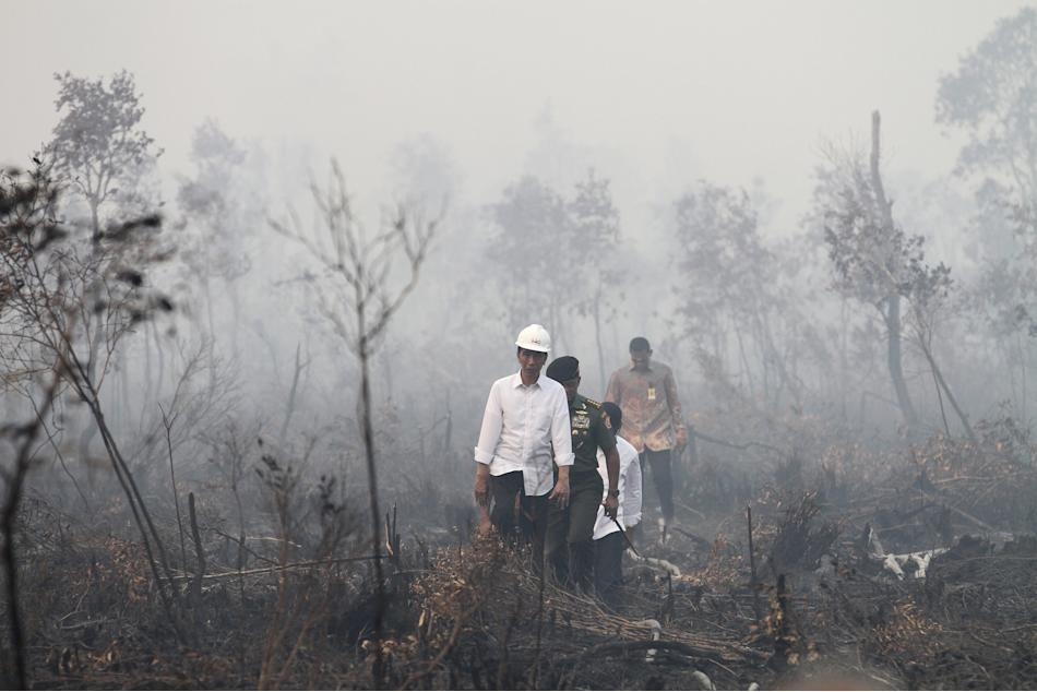 Indonesian President Joko Widodo walks during a visit to the burned forest at Pulo Keronngan village in Ogan Komering Ilir, South Sumatra province