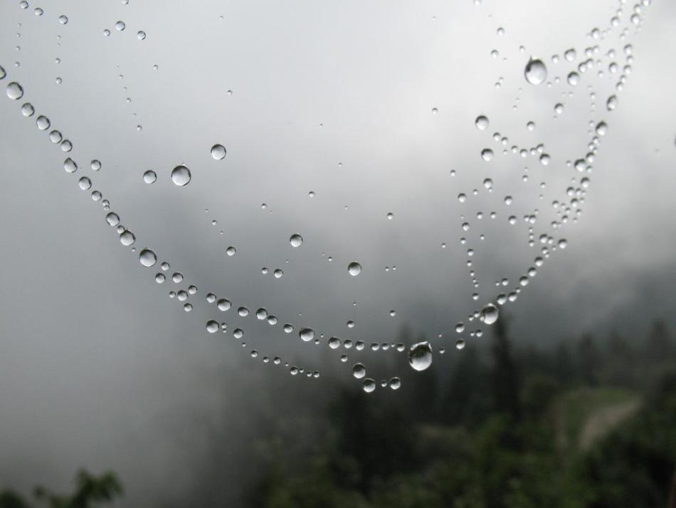 Monsoon - beads