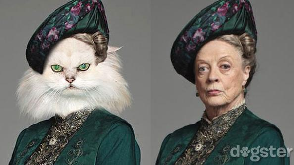Downton Abbey Dogster - Dowager