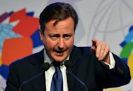 British Prime Minister David Cameron gestures during a press conference held on the second day of the Commonwealth Heads Of Government Meeting (CHOGM) in Colombo on November 16, 2013