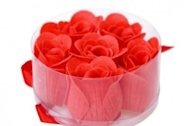 Blooming Businesses—Sales Leads Database image blooming red roses 06 hd pictures 166941 300x199