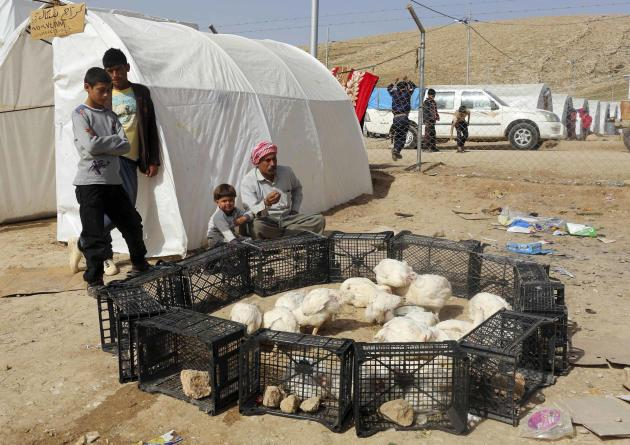 Yazidi refugees sell chickens at a refugee camp on the outskirts of Duhok