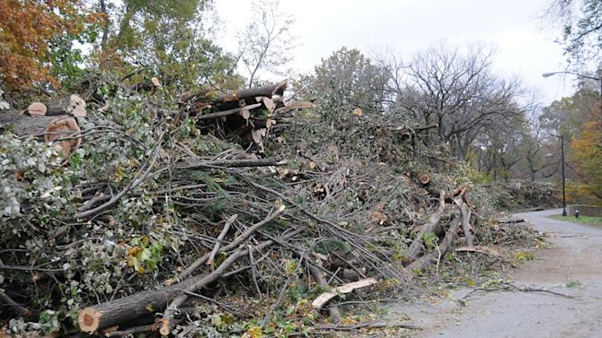 This Nov. 7, 2012 photo provided by the Central Park Conservancy shows limbs and trunks of trees that were destroyed or damaged by Superstorm Sandy stacked along Central Park's 102nd Street cross drive in New York. Experts say Sandy's winds took out more trees in the neighborhoods, parks and forests of New York and New Jersey than any previous storm on record. Nearly 10,000 were lost in New York City alone. (AP Photo/Central Park Conservancy)
