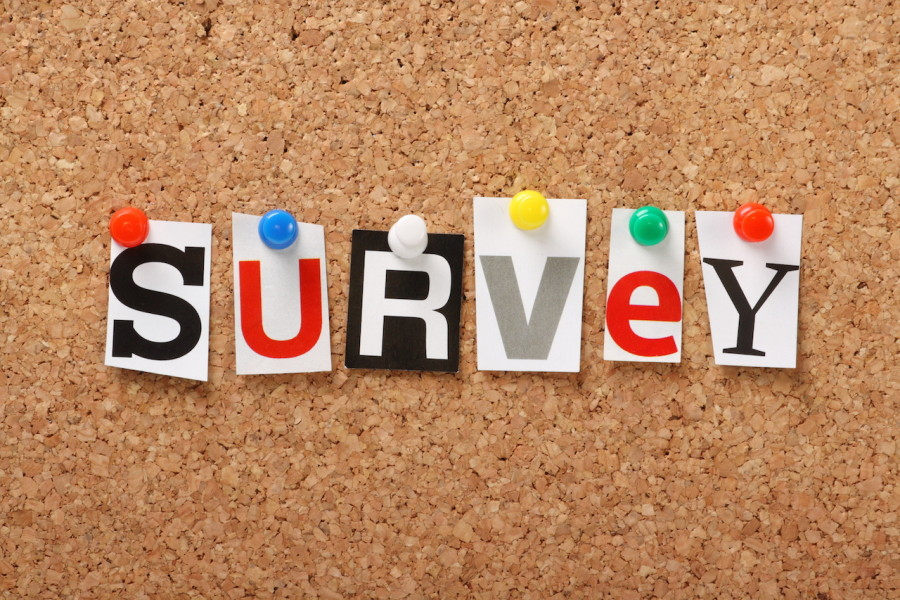 The word Survey on a cork notice board