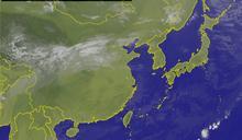 颱風名稱大解密 動植物、食物、星座通通有