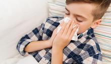 感冒一直好不了? 揪出病因竟是鼻過敏
