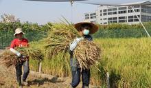 特殊選才 興大農業學系優錄農家子弟