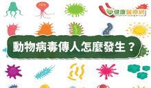武漢肺炎是新型冠狀病毒 跨物種傳染如何發生?