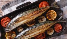 農曆年節前後吃鯖魚正當季!