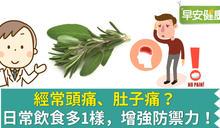 經常頭痛、肚子痛?日常飲食多1樣,增強防禦力!