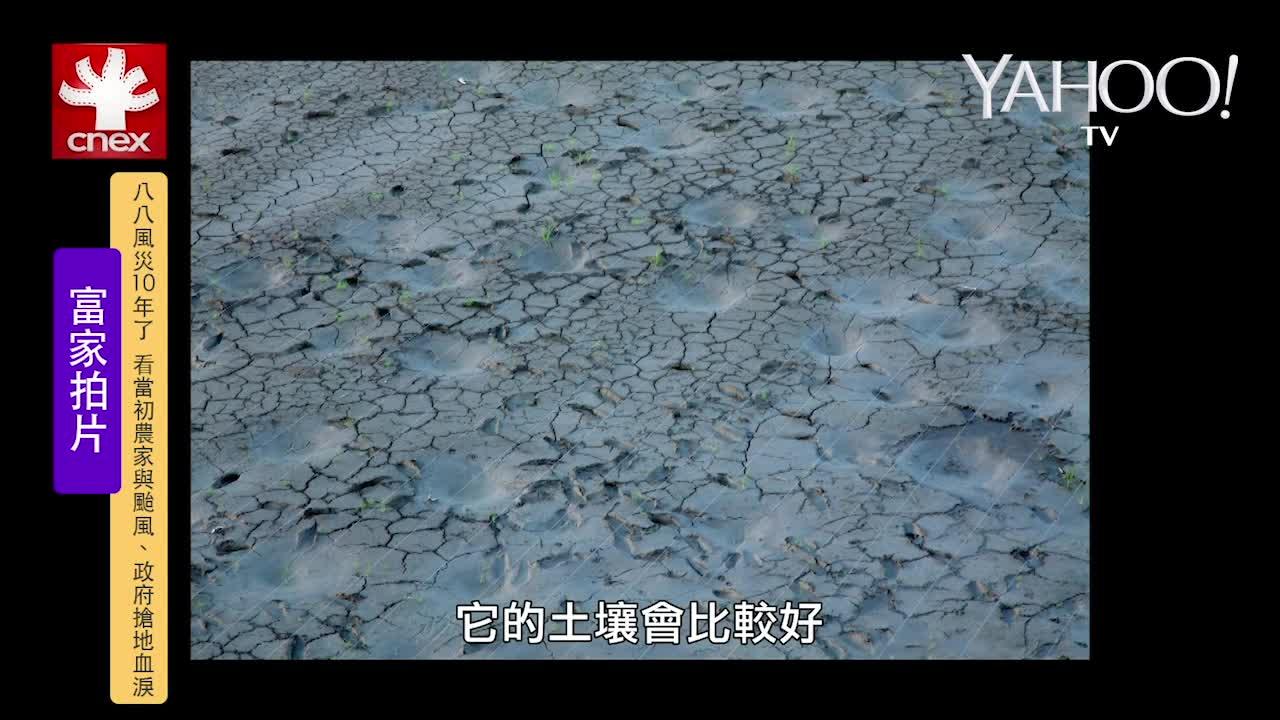 南部農夫真心話:盼颱風帶來好菜價也怕休耕