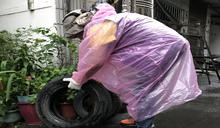 預防登革熱一起清除孳生源 桃市衛生局祭出重罰政策