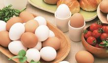 禽流感發威,買洗選蛋要注意什麼?