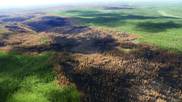 Das Standbild eines Videos zeigt den dramatischen Wald- und Flächenbrand in der Region Krasnojarsk. Laut Forstverwaltung haben die Feuer mittlerweile eine Fläche rund drei Millionen Hektar vernichtet. Foto: Aerial Forest Protection Service/TASS