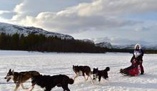 【Yahoo論壇/廖曉佩】一段芬蘭與台灣的跨國友誼(1):哈士奇雪撬競賽與傳統桑拿體驗