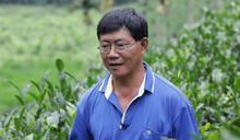 1999年誕生世界馳名的台產高級紅茶 林晉田:希望讓客人嚐到紅玉的四季變化層次
