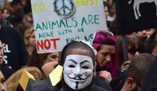 正義社會中,動物有牠的位置嗎?談羅爾斯《正義論》的思考